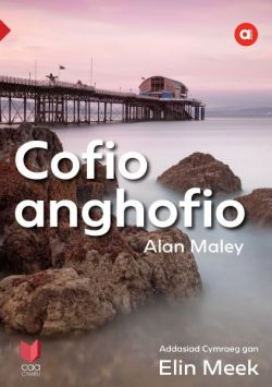 Cyfres Amdani Cofio Anghofio