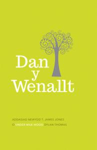 Dan y Wenallt