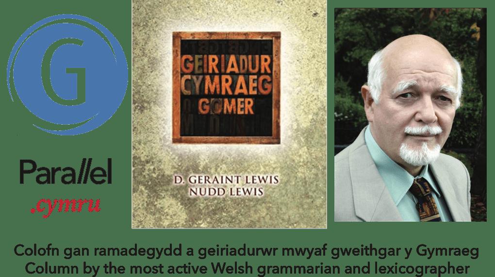 D Geraint Lewis Y Geiriadurwr