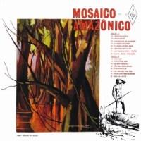 Mosaico Amazonico