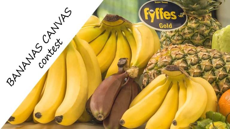 bananas-as-canvas