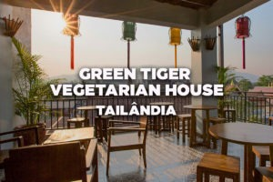 Green-Tiger-Vegetarian-House,-Chiang-Mai,-Thailand---Best-Hostel-in-Asia---PT