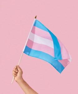 Dia da Visibilidade Trans: entenda a ação e a importância das cirurgias de redesignação sexual