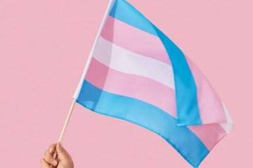 O Dia Nacional da Visibilidade Trans, comemorado em 29 de janeiro, é a data perfeita para se pensar sobre a garantia do acesso de pessoas transgêneros às cirurgias plásticas e de redesignação sexual, que melhoram expressivamente a saúde mental e o bem-estar físico desses pacientes.