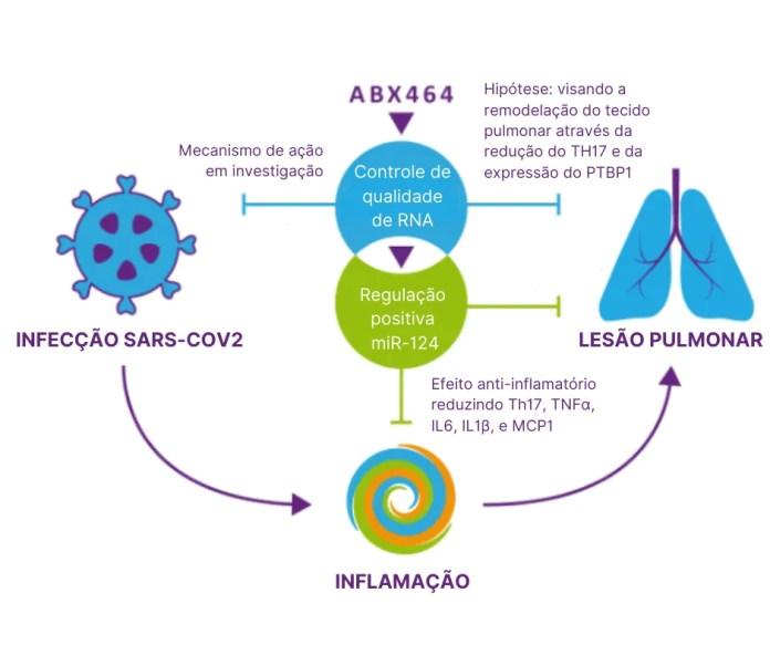Covid-19: Remédio francês em teste em 14 centros no Brasil mostra potencial tratamento da doença