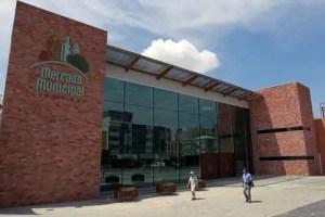 Mercado Municipal Curitiba: quem está por trás do pioneiro setor de Orgânicos?