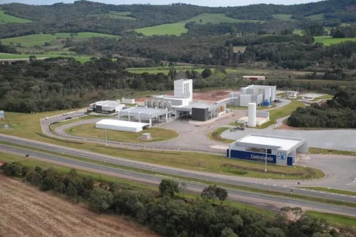 Dezessete dos 100 maiores produtores de leite no Brasil são da Unium