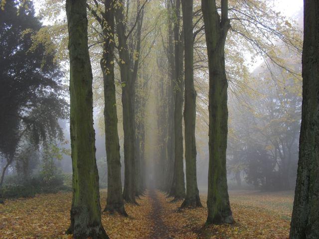 Spooky-Lady-Lucys-walk
