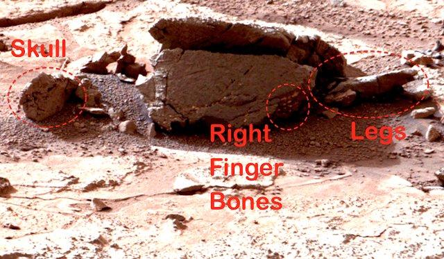 Curiosity: Un fossile d'extraterrestre sur Mars