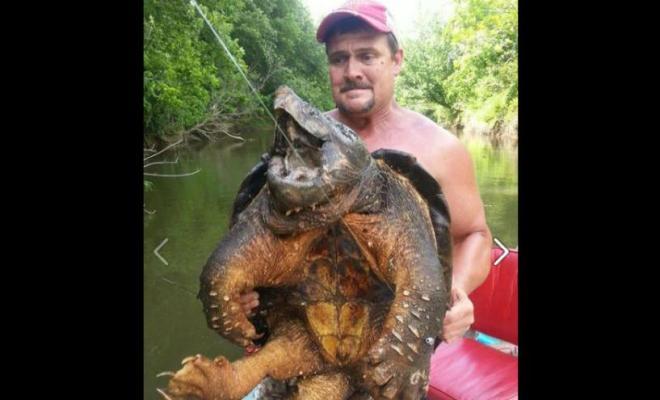 Il pêche une tortue préhistorique