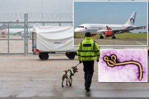 Un passager meurt du virus Ebola à sa descente d'avion