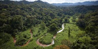 Une extraordinaire cité perdue découverte dans la jungle du Honduras