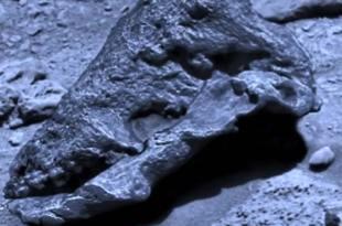 Un crâne d'une créature extraterrestre découvert sur Mars