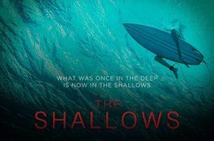 THE SHALLOWS: BLAKE LIVELY COMBAT UN REQUIN EN BIKINI!