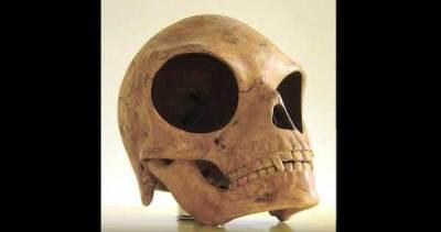 Des travailleurs danois découvrent un Crâne Extraterrestre sur l'île Sealand