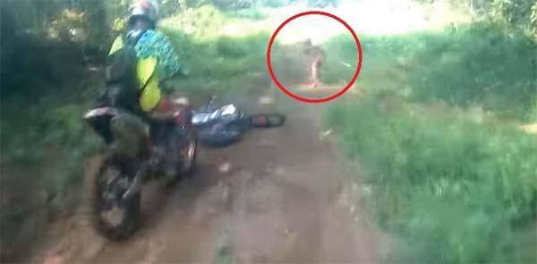 Une mystérieuse créature humanoïde repérée par des motards en Indonésie