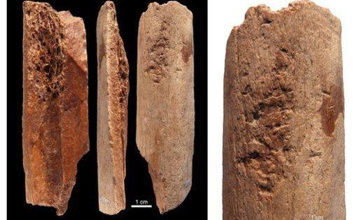 Des outils en os vieux de 115 000 ans découverts en Chine