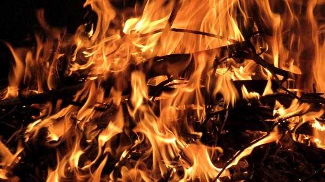 Wood in fire bonfire.jpg