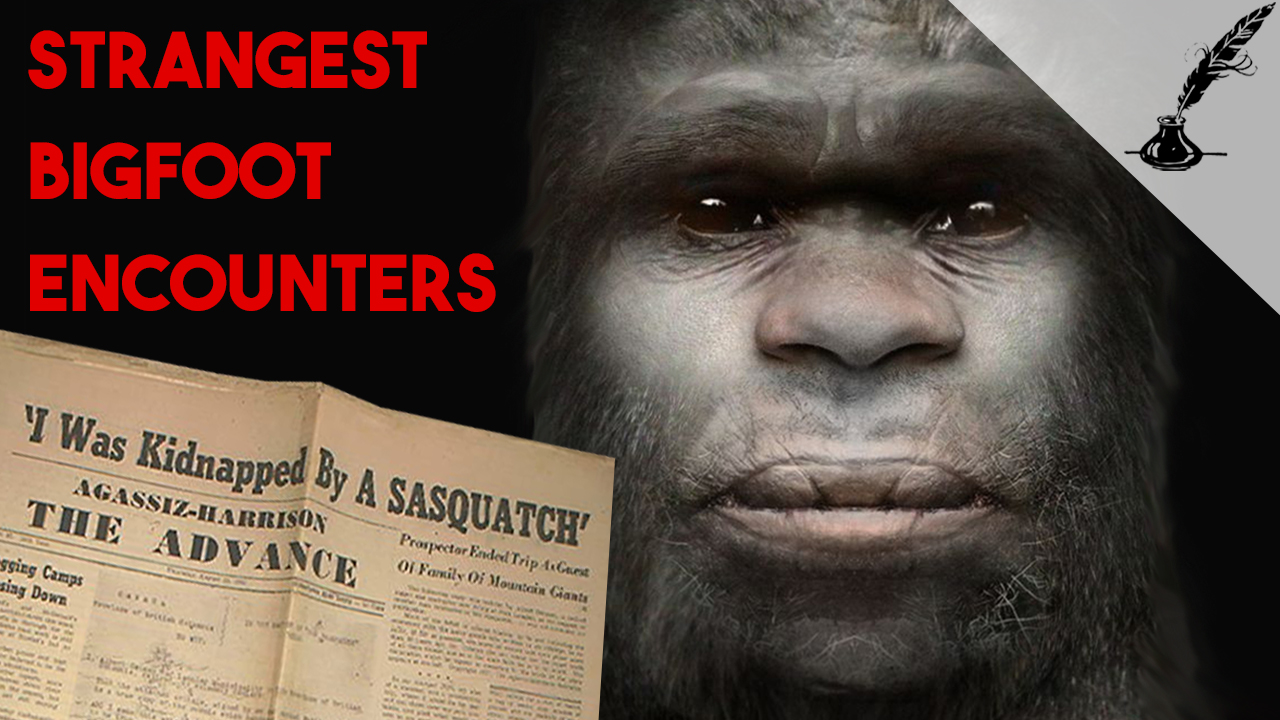 5 Strangest Encounters with Bigfoot in History Thumbnail