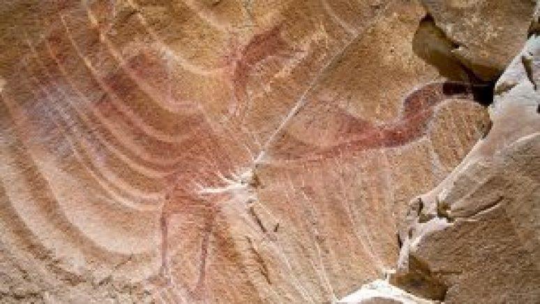 Pterodactyl at Black Dragon Canyon