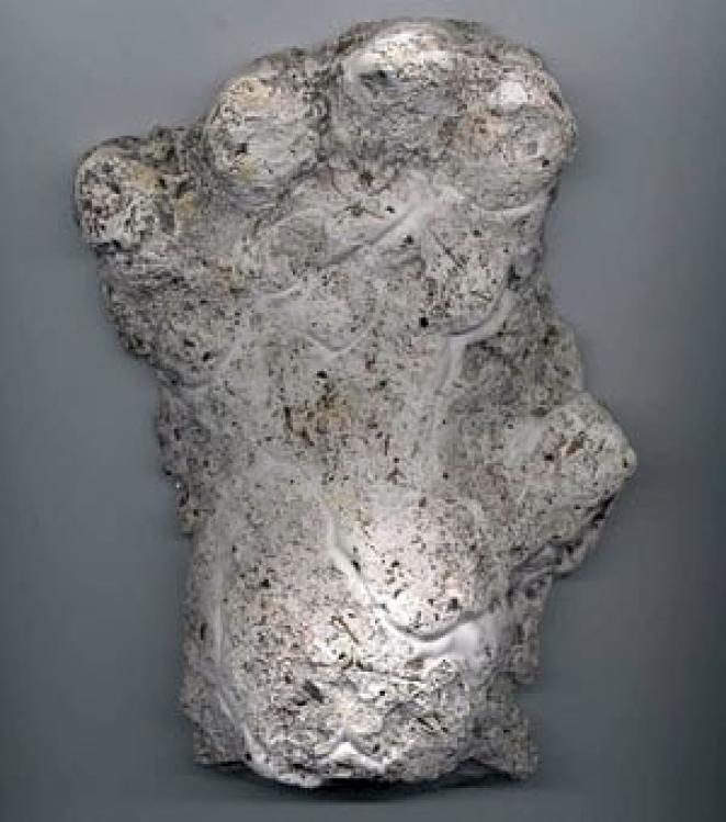 Cast of an alleged orang pendek footprint