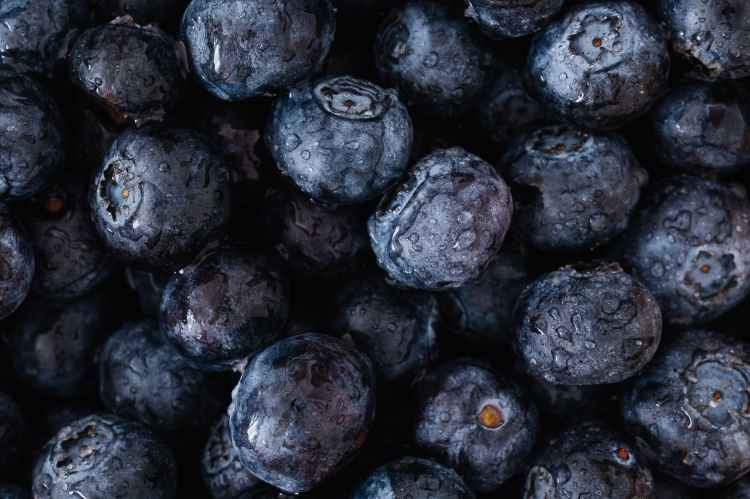 background of wet ripe blueberries