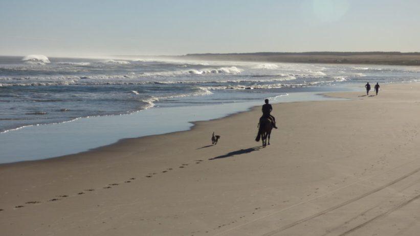 Playa Sur Cabo Polonio