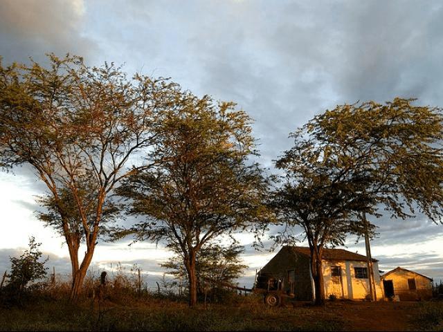 Sertão da Paraíba pode ter nova instituição com cursos de Controle e de Gestão Ambiental