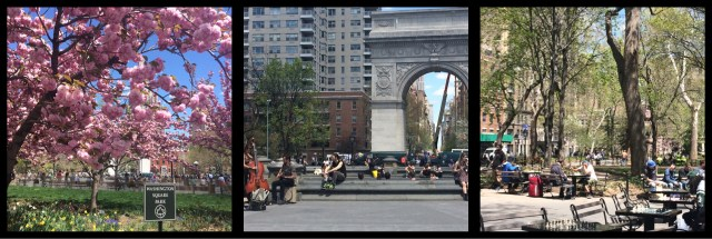 Washington Square Park Manhattan New York City