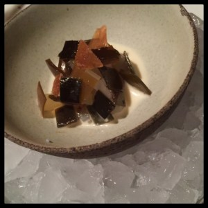 Sliced raw squid & Kelp. Noma. Denmark. Copenhagen