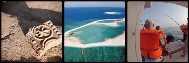 Sir Bani Yas Island. Abu Dhabi