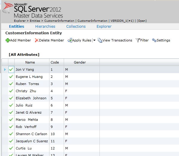 MDS web application explorer SQL Server