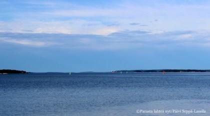 Toivonniemen rannasta avautuu väljä näkymä merelle ruotsinlaivojen reitille.