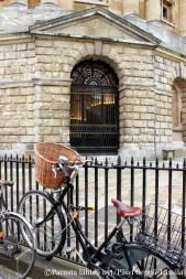 Polkupyörä on suosittu kulkuväline Oxfordissa.