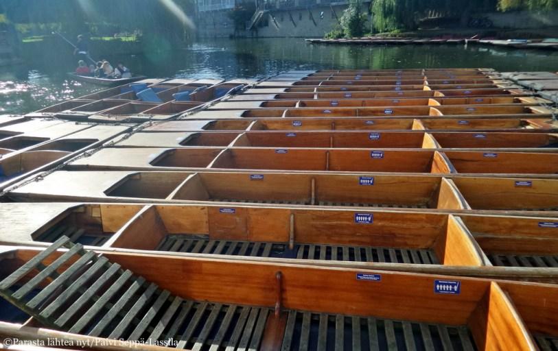Punting-veneitä.