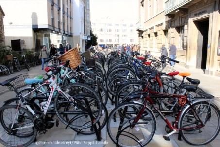 Cambridge on polkupyöräilijöiden kaupunki.
