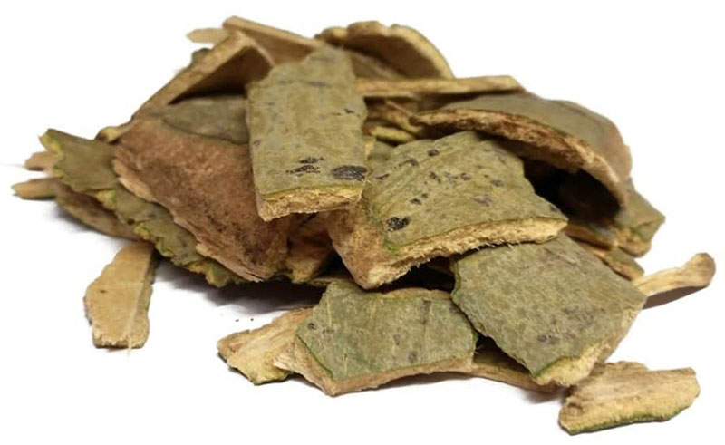 Кора осины – лечебные свойства и противопоказания. Осиновая кора – полезные свойства и применение