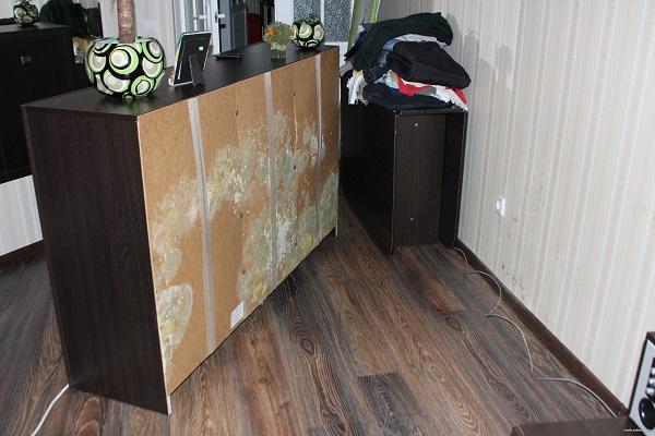 плесень в квартире на мебели