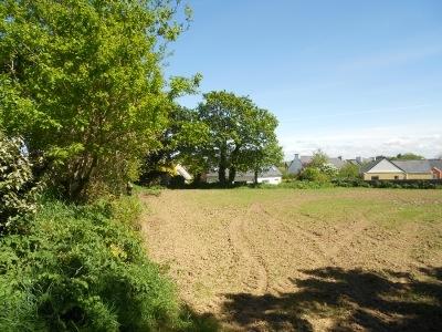 Le Drennec 450 m² 37 800 pas cher grande surface verdoyant entre lesneven et Plabennec superbe espace et terrain