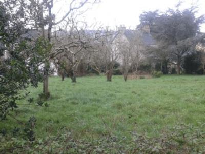 Le Faou terrain à bâtir 452 m² constructible nature Finistère 34 000 € pas cher