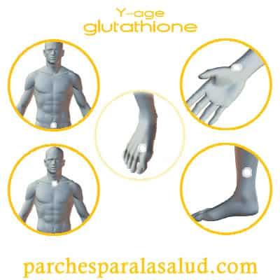 puntos de colocacion de los parches de glutatión
