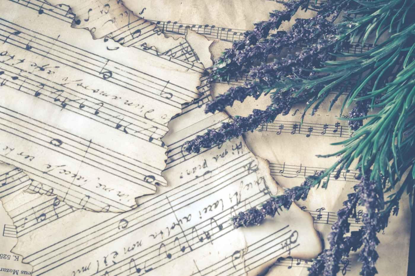 purple lavender over music sheet