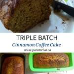 Triple Batch Cinnamon Coffee Cake Recipe