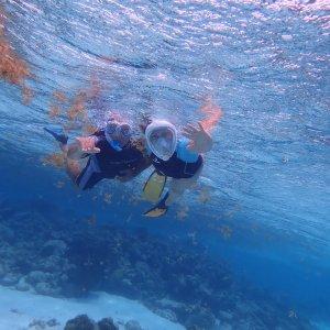 Sous l'eau aux Tobago Cays...