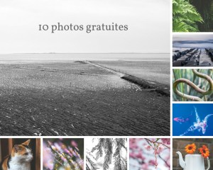 10 photos gratuites