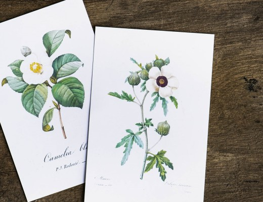 Floral designed greeting cards