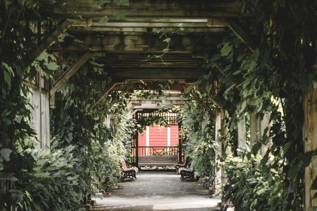 jardin botanique de montréal (7)