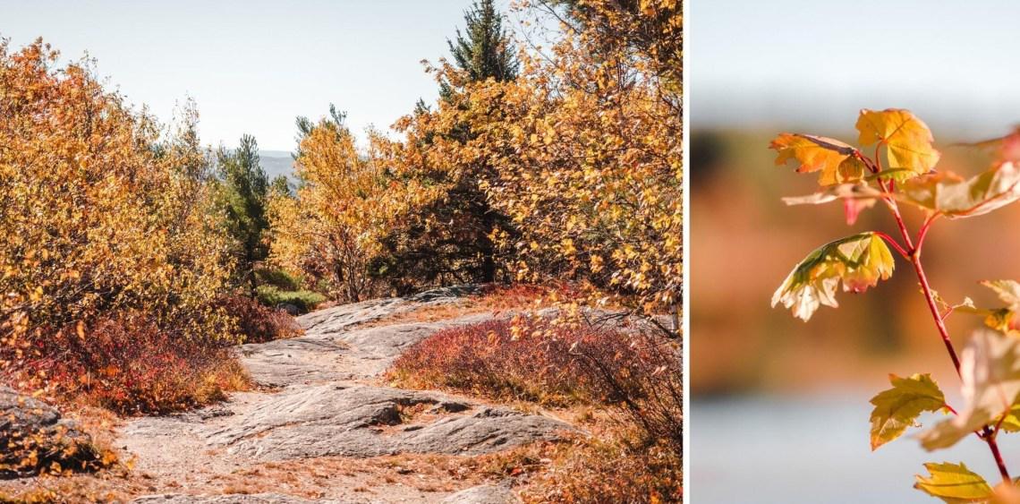 new hampshire hiking at fall (10)