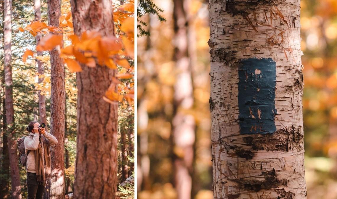 new hampshire hiking at fall (15)