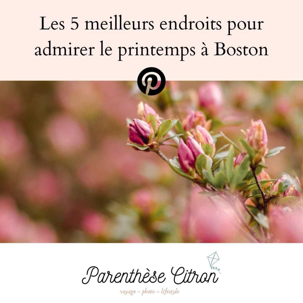 Parenthèse Citron, blog voyage et (slow) lifestyle(1)